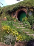 21495721-hobbiton-film-area-of-lord-of-the-rings-and-the-hobbit