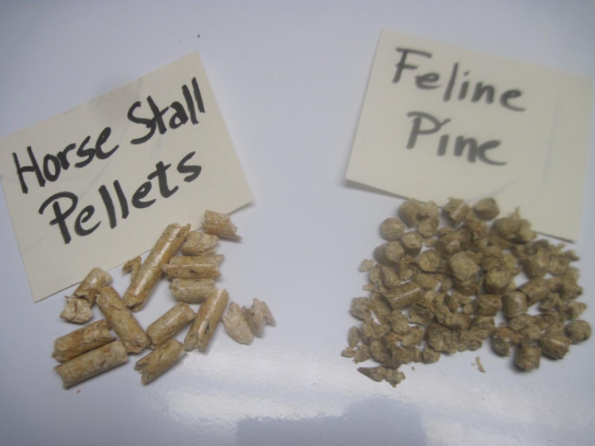 Product Review 6 Feline Pine Vs Horse Stall Pellets
