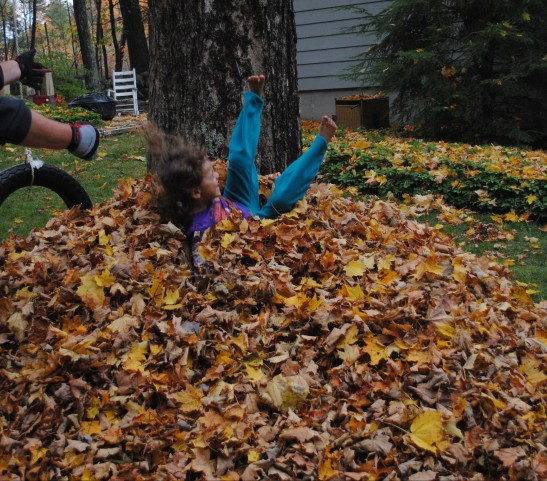 Raking does have it's high points when you are small.