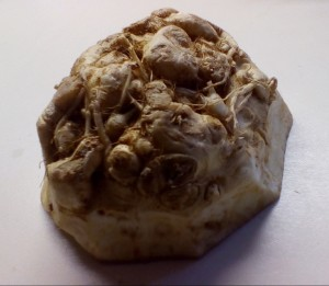 Piece of peeled Celeriac/Celery Root