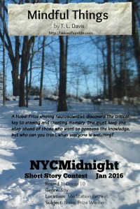 Mindful Things: NYCMidnightSSC